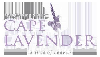 Buy Lavender Online